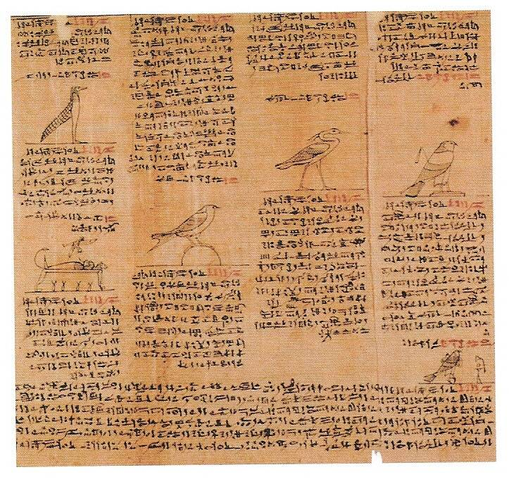 EGYPTIAN BOOK OF THE DEADDetroit Institute of Arts Acc. No. 1988.10.1